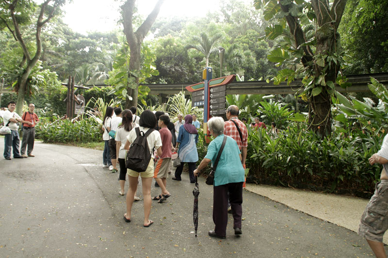 Walking in Jurong Bird Park